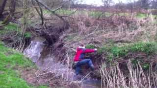 Funny Clip On How Not To Retrieve A Dummy From The Water Bank After His Hungarian Vizsla Left It.