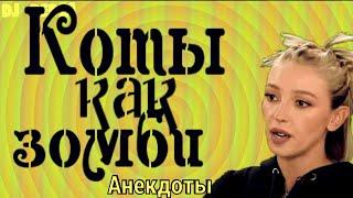 Настя_Ивлеева в анекдотах с DJ DED21 Анибтико или сногсшибательный уровень красоты женщины
