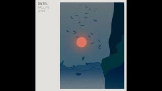 Dntel: Fall In Love