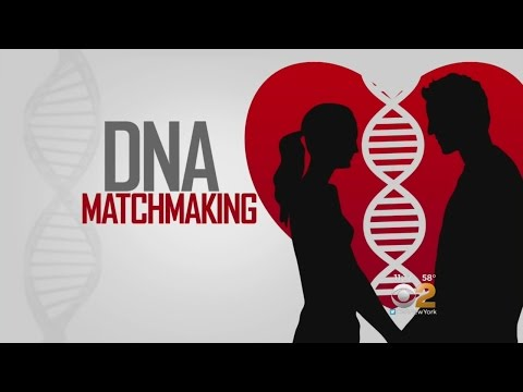 Scientific matchmaking test Answers for The scientific method