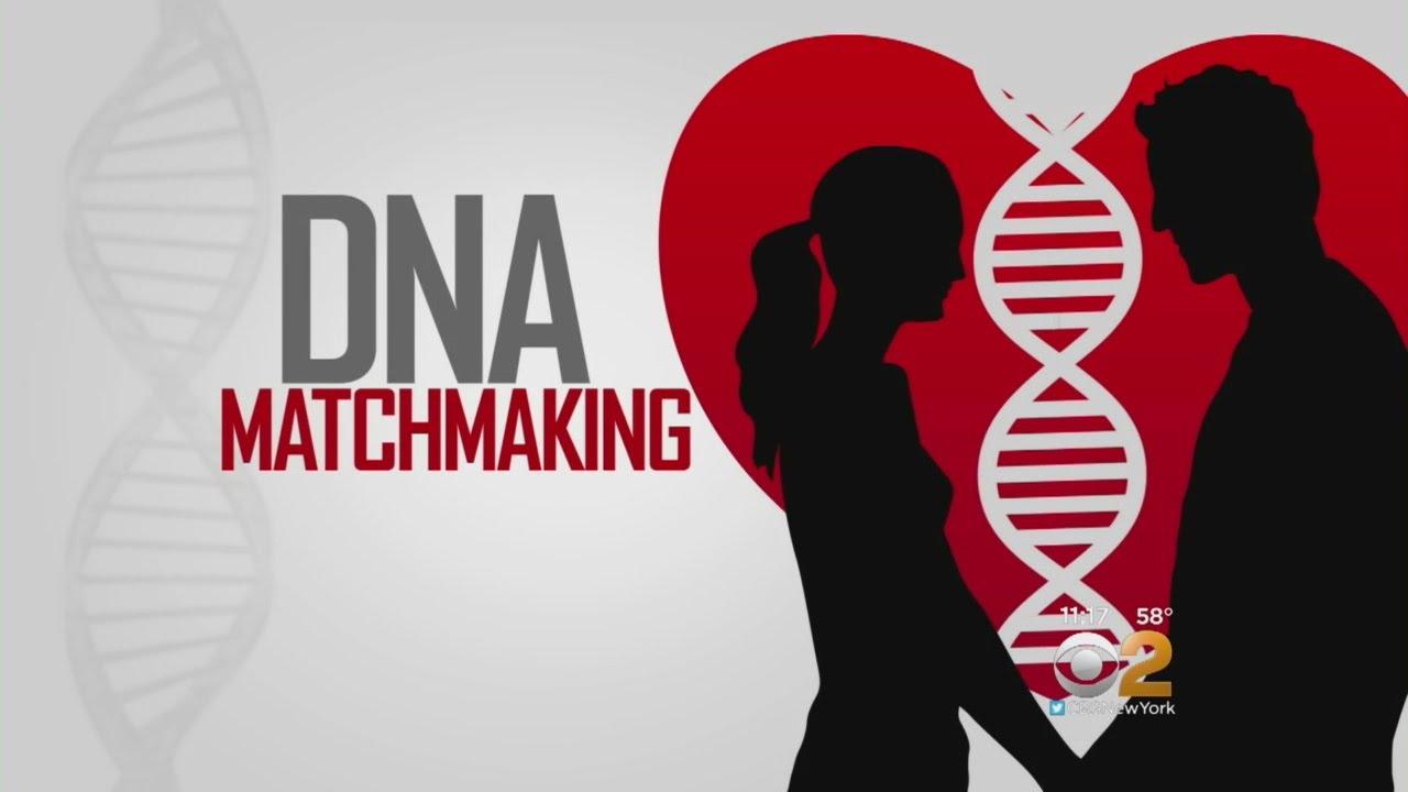 dna matchmaking
