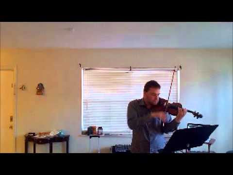 Ft. Lauderdale Violinist plays Feel This Moment by Pitbull ft. Christina Aguilera