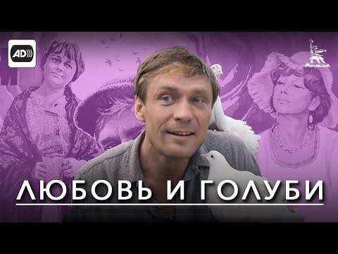 Любовь и голуби (с тифлокомментариями) (комедия, реж. Владимира Меньшова, 1984 г.)