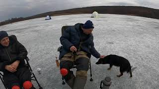 Рыбалка с ночевкой с Хотомля Печенежское водохранилище Март 2021