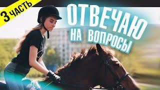 СКОЛЬКО СТОИТ Конный Спорт? / ВОПРОС-ОТВЕТ 3 часть
