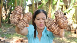Awesome Cooking Fried Toro Desert Recipe -  Show Eating Toro Desert Delicious  -Village Food Factory