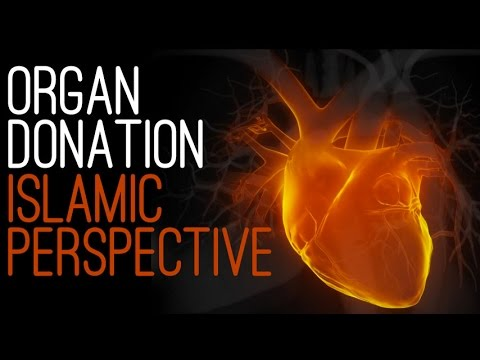 Organ Donation: an Islamic Perspective | Dr. Shabir Ally