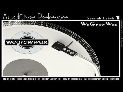 Auditive Release - Special-Mixtape - Label - WeGrowWax / Downtempo /Instrumentals / Chillhop (HD)