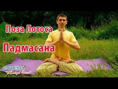 Кинофильмов поза сверху видео научиться русский