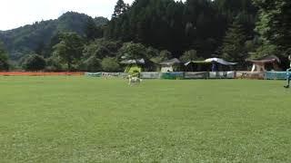 17.9.2-3 曲テストがてらアップロード(^^) YouTubeの無料オーディオ使っ...