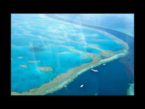 Great Barrier Reef / Marine Park / Australia