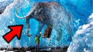 Bin Yıllar Önce DONMUŞ 10 Hayvan