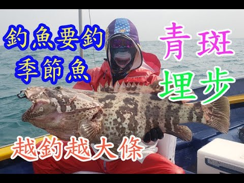 【香港釣魚】《釣魚要釣季節魚~青斑埋步越釣越大條》Offshore Grouper Fishing - YouTube