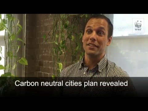 Carbon neutral cities plan revealed