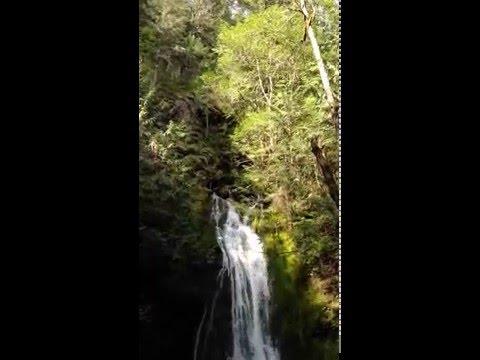 Madison Creek Falls, Olympic National Park (May 2015)