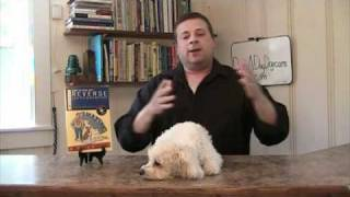 Dog Daycare Business - How To Start A Dog Daycare Business