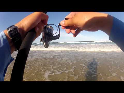 Beach Fishing - Gold Coast