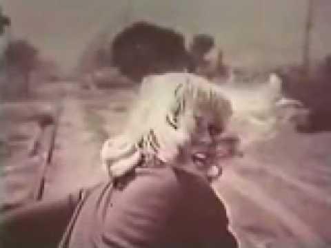 1967 Dodge Dart Pamela Austin