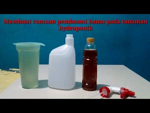 cara-membuat-pestisida-alami-|-obat-pembasmi-hama-serangga,ulat-untuk-hidroponik