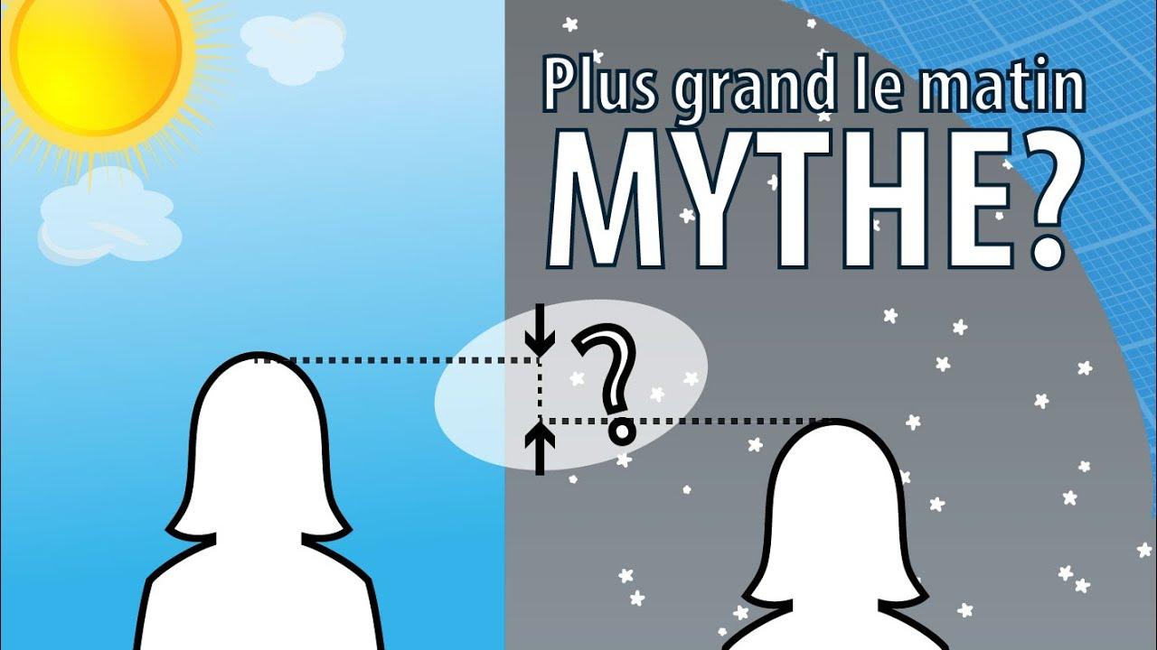 Mythe : est-on plus grand le matin que le soir ? - Scilabus 25