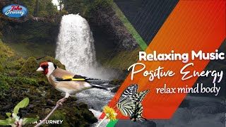Relaxing Music and Meditation Healing Energy Field Music - Positive Reduce Stress Teha Journey