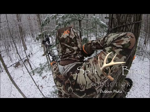 Three Deer Down in One Hunt!   Bowhunting   Split Brow Productions 2020 Ep. 14
