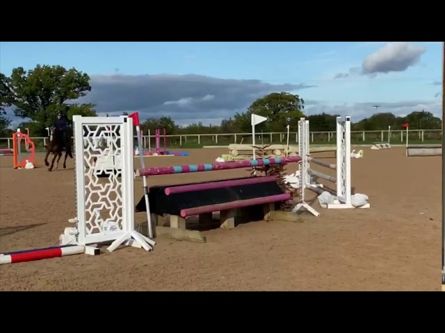Owner Video: Tenderfoot Hadrian jumping in Glushu.