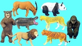 Animals Figures Toys Collection