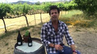 not so professional......tasting notes Adrian Fog Winery Stewart Dorman owner winemaker