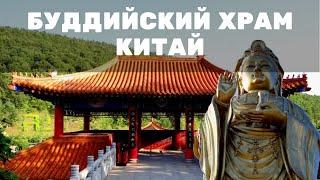 Золотой Будда. Очень живописный храм на вершине горы thumbnail