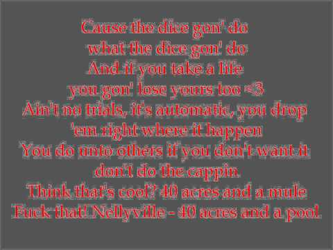 Nelly- Nellyville with lyrics