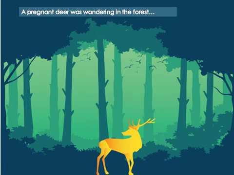 The pregnant deer