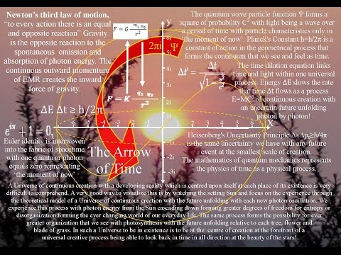 Oneness of one universal process (part mirrored video Lena Danya)