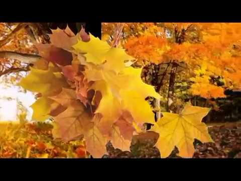 Бутырка (Какая осень
