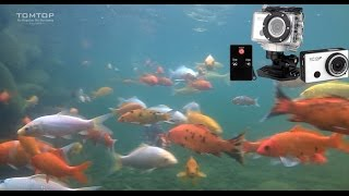 5 0mp hd 1080p waterproof wifi action sports dv camera camcorder ir remote control wdv5000