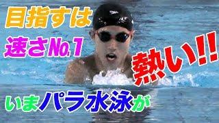 目指すは速さNo.1 いまパラ水泳が熱い!!