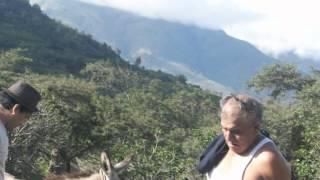 ADRIANO PEREZ.wmv thumbnail
