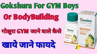 गोक्षुरा जिम जाने  वाले कैसे खाए  जाने फ़ायदे  gokshura for zym boys and bodybuilding