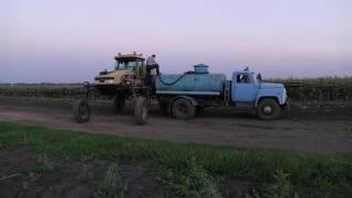 Арбуз технология выращивания