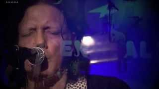 CHARLEY CRUZ & THE LOST SOULS-WAYWARD LOVE @ Flying Fish festival 22-11-2014