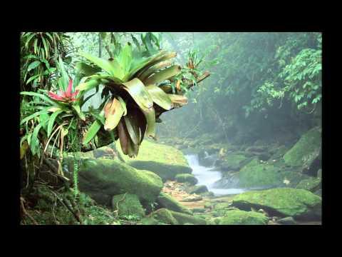 Yanni - Inspirato - I Genitori - Full Track