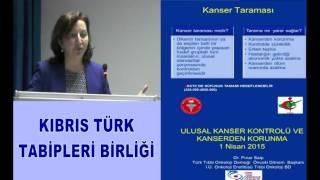 Prof Dr Pınar Saİp