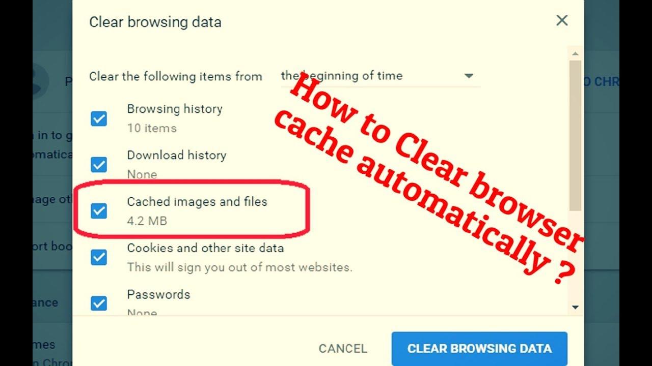 remove cache chrome plugin