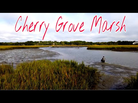 Cherry Grove Marsh, North Myrtle Beach, SC - Russell Burgess Coastal Preserve - BEAUTIFUL VIEW!!