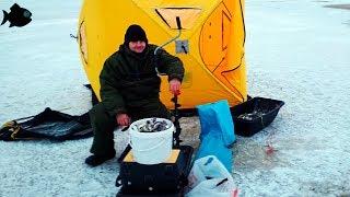 ПОПАЛИ НА ДИКИЙ КЛЕВ / КОСЯК НАВАГИ В ЛУДЕ / рыбалка на севере