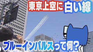 東京上空の感謝飛行で話題、ブルーインパルスって何!?【マスクにゃんニュース】