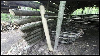 Overnight In A Longhouse Hut: Loading Woodshed, Primitive Axe, Campfire Cookout