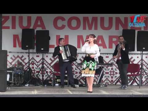 VIOLETA CONSTANTIN COLAJ MUZICA POPULARA DE PETRECERE - Hore, Sarbe