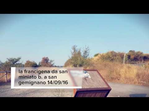 La via francigena da san miniato basso a san gemignano 14/09/2016