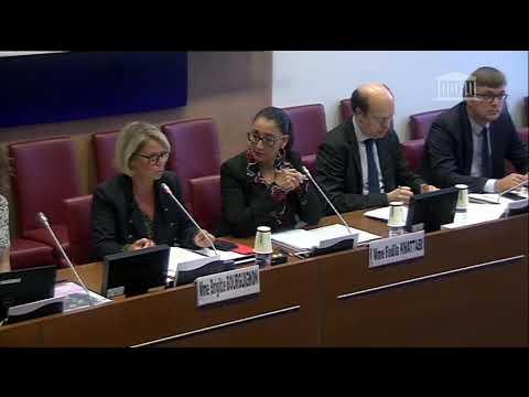 Commission des Affaires Sociales - La République doit être une chance pour tous - Réponse BB 21019
